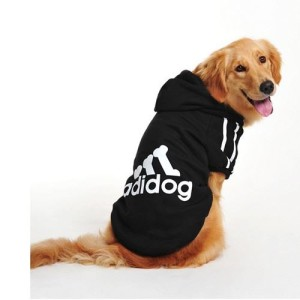 purchasing cheap dog clothes for small dogs
