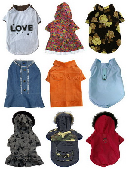 Discover Cutest Clothes For Small Dogs