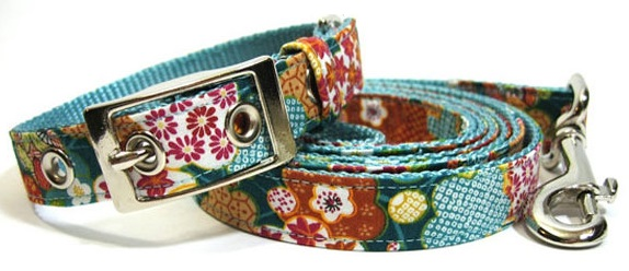 Lovely Unique Collars and Leash For Dogs