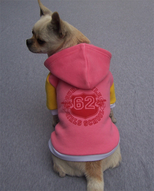Pink Super Style Dog Hoodie