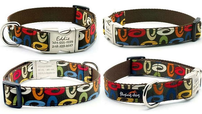 Trendy Unique Leather Dog Collars