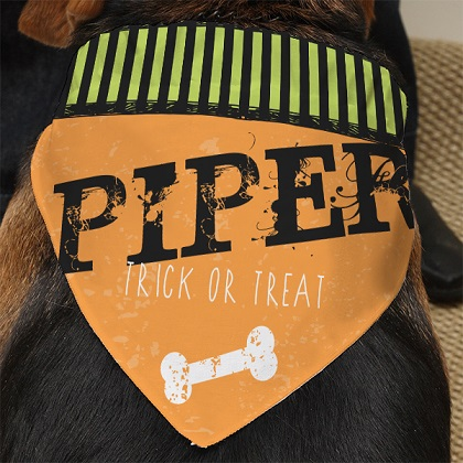 Trick or Treat Custom Printed Bandanas For Dogs