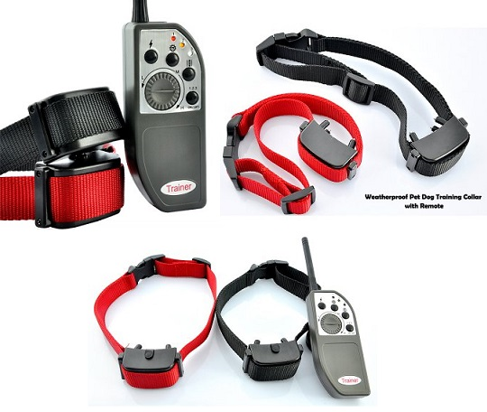 Best Dog Shock Weatherproof Pet Dog Training Collar with Remote Control