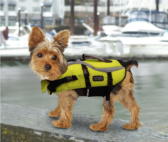 Best Selling Dog Life Jacket