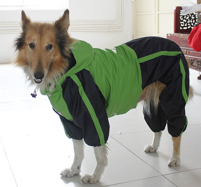 Buy Cheap Large Dog Raincoat
