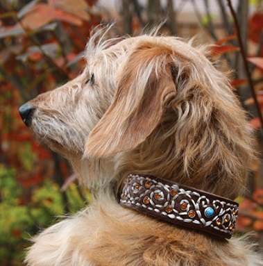 Custom Cheap Leather Dog Collars