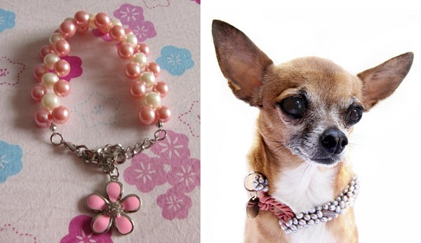 Cute Small Dog Collars
