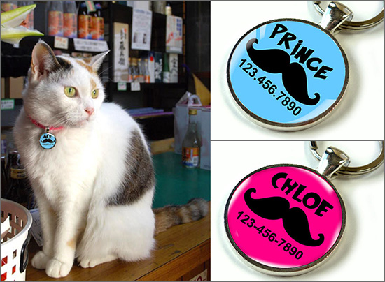 Discover Personalized Pet Id Tags For Cats