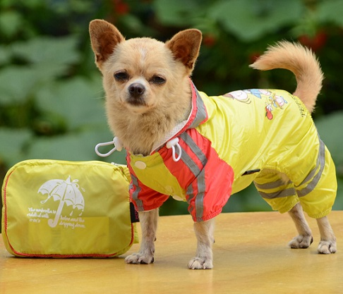 Double Layer Mesh Dog Raincoat