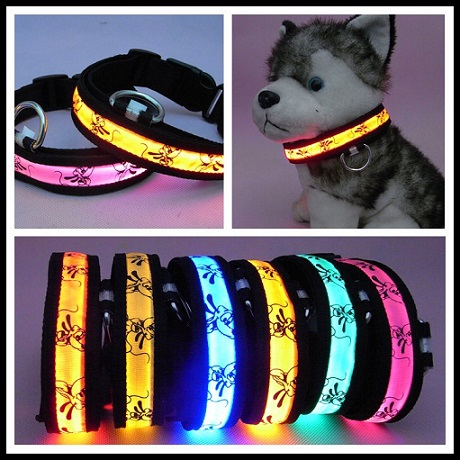 Get Cheap E-glow Dog Collars