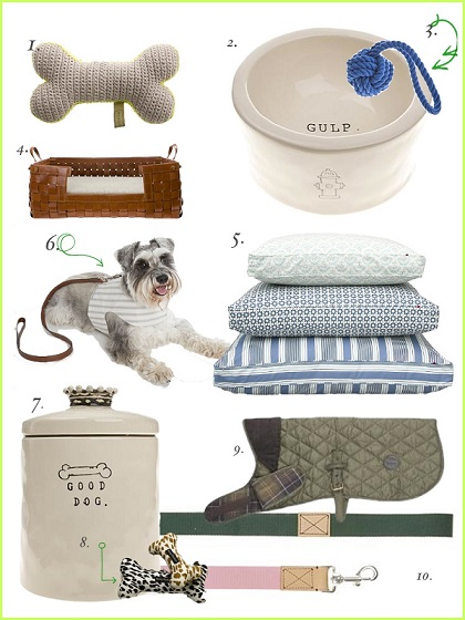 Must-have Pet Accessories
