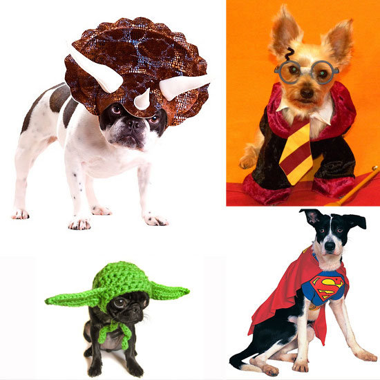 Popular Pet Halloween Costumes