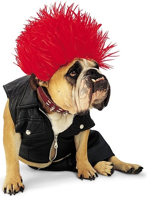 Punky Pet Costumes