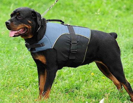 Rottweiler Dog Harness Vest